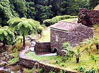 Wandern auf den Azoren. Insel São Miguel auf den Azoren. Azoren Urlaub, Azoren Portugal