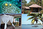 Diving Accommodation Villa Cottage Indonesia Hotel Resort Asia