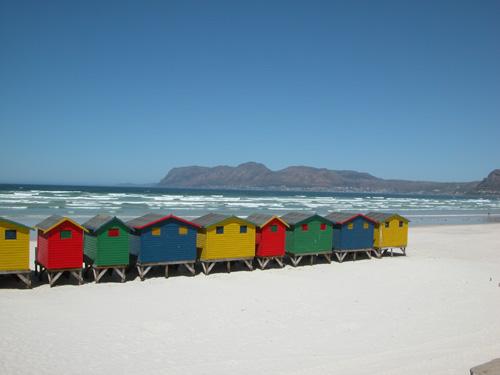 Tagesausflug zum Kap der guten Hoffnung