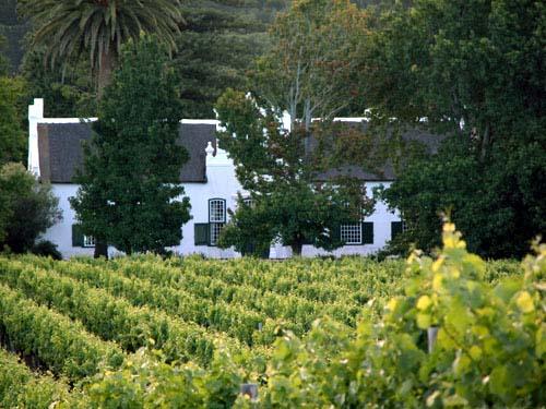 Fotos aus Südafrika, Weingut, Constantia, Buitenverwachting, Boschendal, Kapstadt